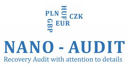 Nano-audit